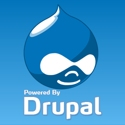 drupal-web-developer2 (9K)